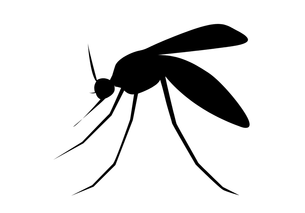 Insect Bites and Stings | Treatment